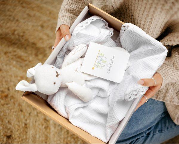Telegram za novorojenčka